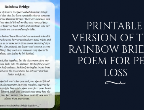 Original Rainbow Bridge Poem Printable Version for Free