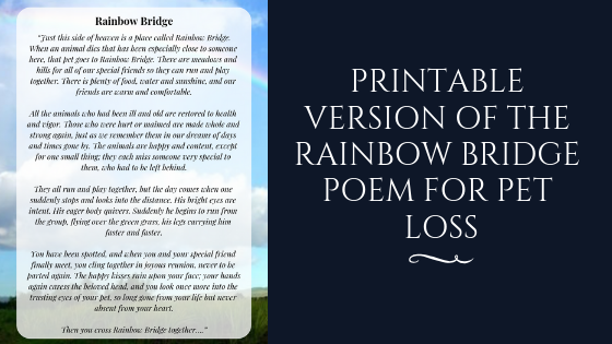 Revered image inside poem rainbow bridge printable
