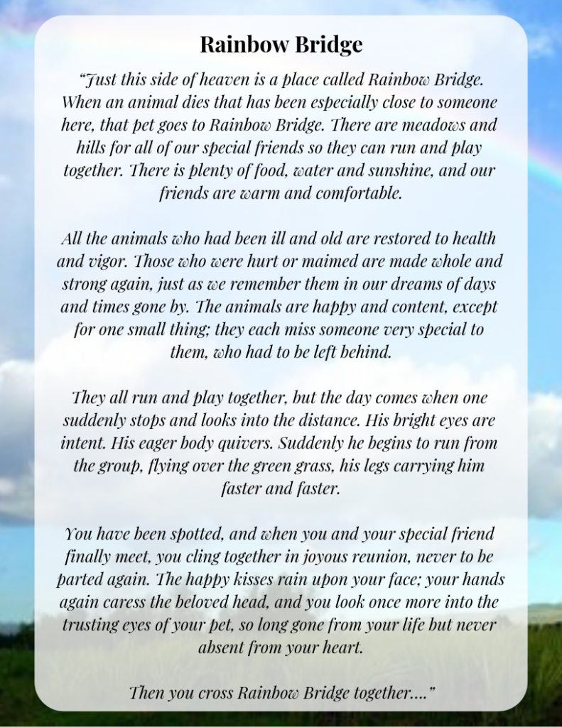photograph relating to Rainbow Bridge Pet Poem Printable titled Unique Rainbow Bridge Poem Printable Edition for Totally free