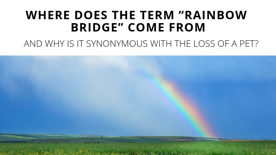 graphic relating to Printable Rainbow Bridge Poem identified as Authentic Rainbow Bridge Poem Printable Edition for Cost-free